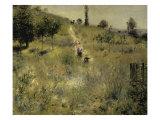 Path Through the Tall Grasses