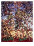Trees in the Garden of Saint-Paul Hospital Giclée par Vincent Van Gogh