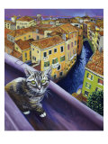Cat of Venice (Chat de Venise)