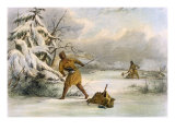 Spearing Muskrats in Winter