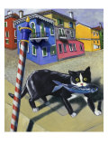 Cat of Burano (Chat de Burano)