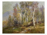 Autumn Birches in the Catskills