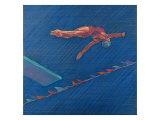 Highboard Diver