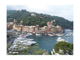 Portofino From the Terrace