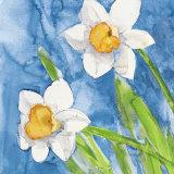 Narcisi (detail)