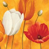 Festa di Tulipani (detail)