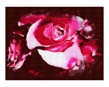 Pink Rose II Oil Painting by Sharon Snead
