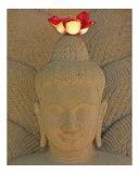 Boddhi Buddha