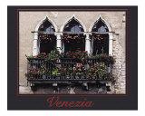 263 Venezia