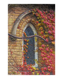 Church window in fall