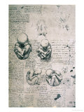 Five Views of a Foetus in the Womb  Facsimile Copy