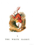 "The White Rabbit  Illustration from ""Alice in Wonderland"""