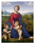 Madonna in the Meadow  1505 or 1506