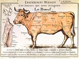 Boeuf: diagramme représentant les différentes coupes de viande Reproduction d'art