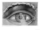 Eye Enclosing the Theatre at Besancon  France  1847