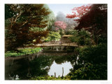 Japanese Ornamental Garden in Blossom