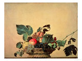 Basket with Fruit  circa 1596