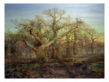 The Edge of Sherwood Forest  1878