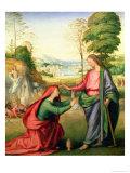 Noli Me Tangere  circa 1508