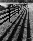 Fences and Shadows  Florida