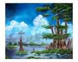 042805 Bald Cypress St Francisville  La