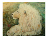 A White Lion