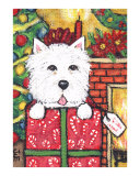 West Highland Terrier In Christmas Package