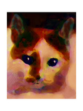 Tinsy Cat