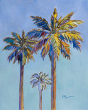 Santa Rita Palms II