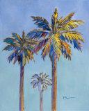 Santa Rita Palms II