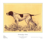 Hunting Dogs  Pointer