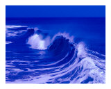 Blue Curl - Ocean City  Maryland