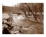 A creek in Valley Forge  PA