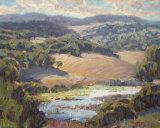Golden Foothills II
