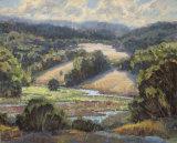 Golden Foothills I