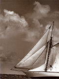 Sepia Sails II