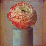 Floral Study I