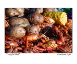 Crawfish Boil - Louisiana Style