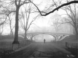 Gothic Bridge  Central Park  New York City