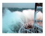 Headed north in the Bering Sea