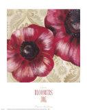 Bloomers III