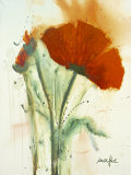 Bunch of Poppies II