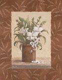 Sylvia's Orchids I