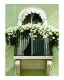 White Petunia Balcony