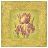 Golden Iris Detail