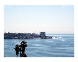 la jolla  CA Ocean overlook