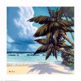 Palms III