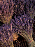 Lavender Bunches  Bouches-du-Rhone  France