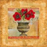 Rojo Botanical V
