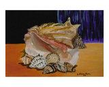 Seashells Still Life - Jewels of the Ocean